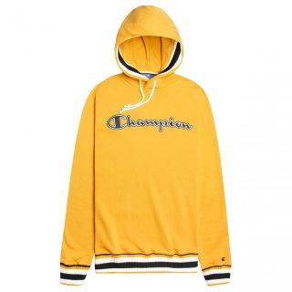 Champion Varsity Hooded Sweatshirt
